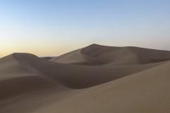 Sulle sabbie del deserto non si possono mettere radici